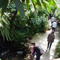 """Mainau-bodensee-org-4026 • <a style=""""font-size:0.8em;"""" href=""""http://www.flickr.com/photos/134472863@N03/27035958065/"""" target=""""_blank"""">View on Flickr</a>"""