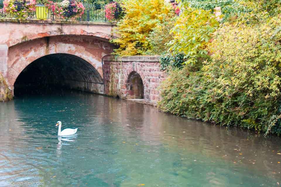 каналы Кольмара, Франция