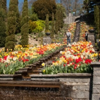 "Mainau-bodensee-org-3923 • <a style=""font-size:0.8em;"" href=""http://www.flickr.com/photos/134472863@N03/26432452163/"" target=""_blank"">View on Flickr</a>"