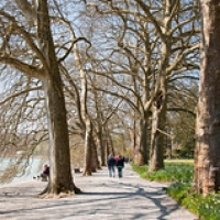 """Mainau-bodensee-org-3984 • <a style=""""font-size:0.8em;"""" href=""""http://www.flickr.com/photos/134472863@N03/26967366421/"""" target=""""_blank"""">View on Flickr</a>"""