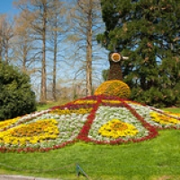 """Mainau-bodensee-org-4000 • <a style=""""font-size:0.8em;"""" href=""""http://www.flickr.com/photos/134472863@N03/26432304703/"""" target=""""_blank"""">View on Flickr</a>"""