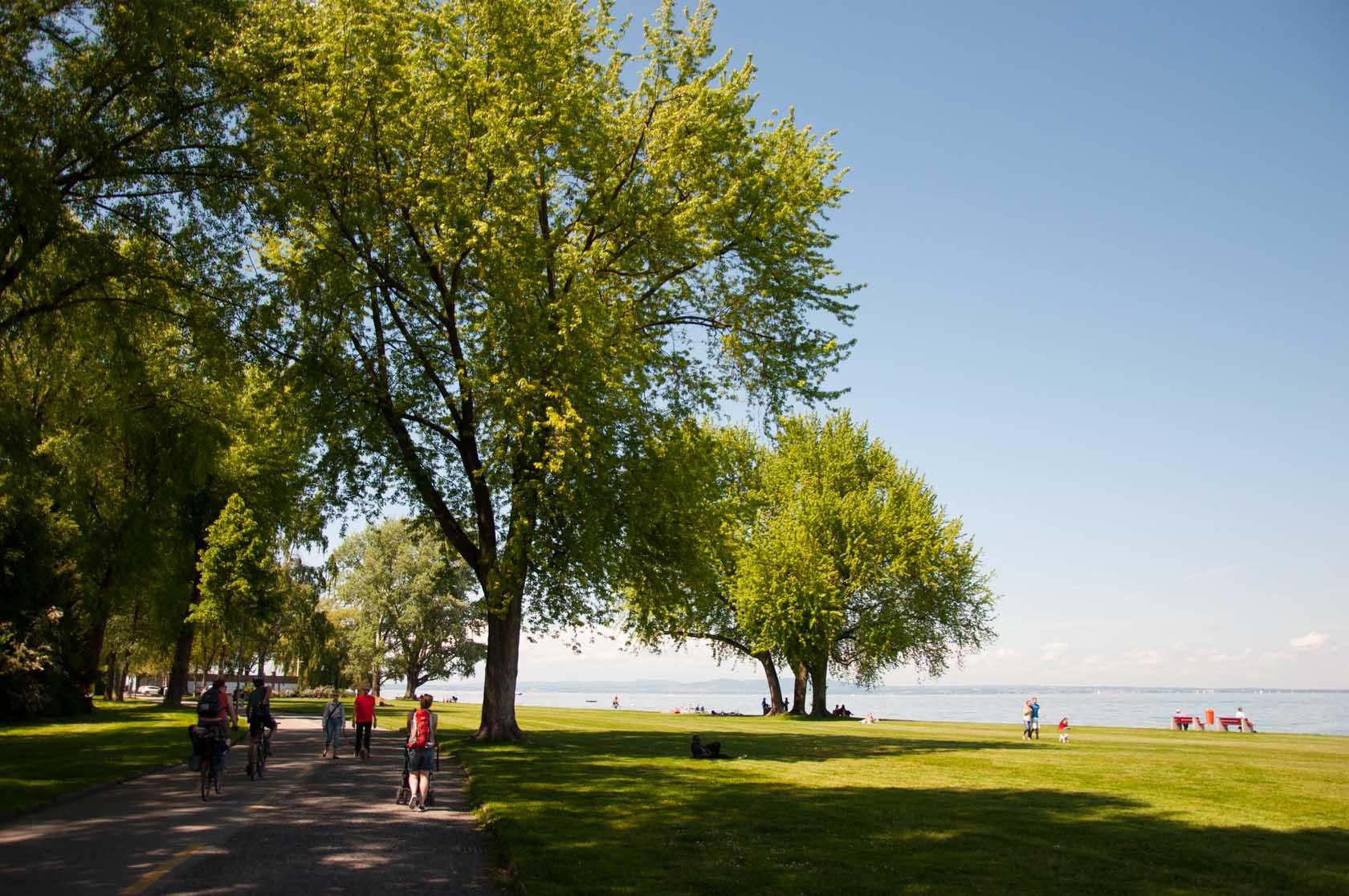 Велодорожка вдоль Боденского озера